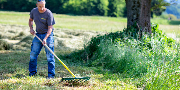 Maintain lawns and grassy areas